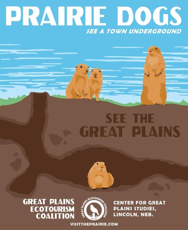 eco-prairie-dog
