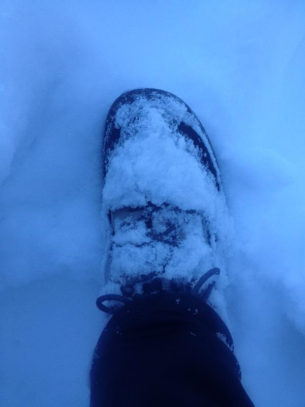 snowy shoe