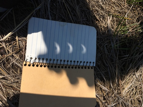 sun crescents